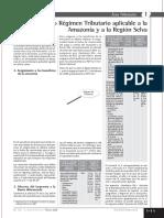 REGIMEN AMAZONICO.pdf