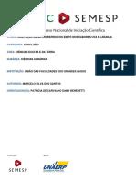 trabalho-1000020314.pdf