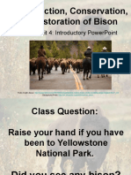bison-conservation