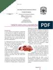 Informe Calidad Carne