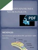 GRANDES SINDROMES NEUROLOGICOS.pptx