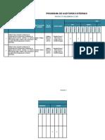 Anexo 4 - Programa de Auditorias Internas_REQ_REV_0