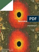 Neurotransmision.