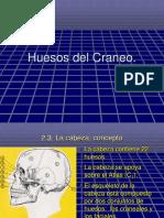 osteologia y Artrología.