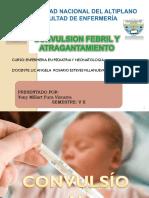 Convulsion Febril g g