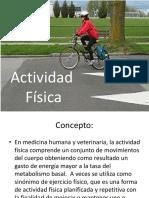 Actividad Física.pptx