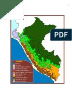 157133054-El-Desierto-y-Las-Lomas-Costeras-y-Etc.docx