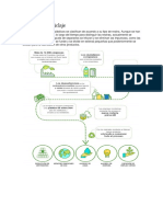 Proceso Del Reciclaje