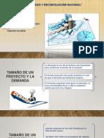 FACTORES QUE DETERMINAN EL TAMAÑO DEL PROYECTO