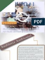 MEDIO AMBIENTE Auditoria Ambiental