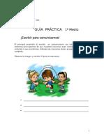 Guía Práctica Iº A