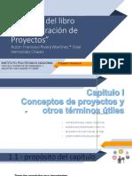 Administracion de Proyectos (Completo)