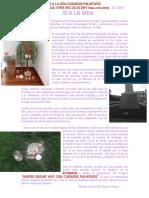 SÍ A LA VIDA CUIDADOS PALIATIVOS VELADA.OTRA VEZ JULIO 2011.pdf