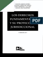 Los Derechos Fundamentales y su Protección Jurisdiccional.pdf