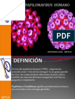 papilomavirus. diapositivas (2)
