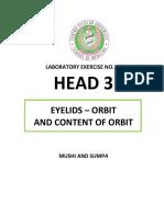 HEAD-3-1