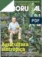 Agricultura sintrópica.pdf