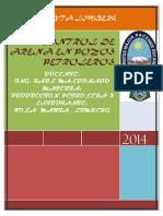 244166022 Control de Arena en Pozos Petroleros PDF