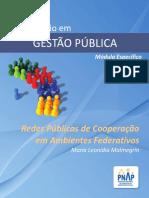Pnap-1 - Gestão de Redes Públicas de Cooperação Em Ambientes Federativos (1)