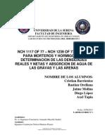 3º Informe NChs 1117 y 1239