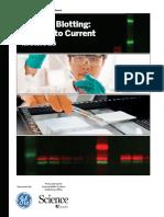 Western_Blotting_ScienceGE2booklet_MedRes_9june15.pdf