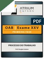 Apostila Oab Exame Xxv Primeira Fase Processo Do Trabalho Douglas Caetano