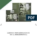 Ambitos fenomenológicos de la hermeneutica