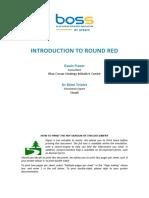 Introduction-Round-Red-master (semana 01).pdf