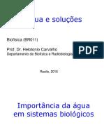 Bioeletrogênese - água e soluções