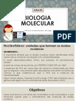Aula 03 - Biologia Molecular