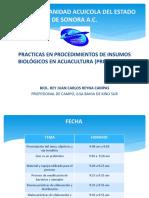 Presentación de BPPA Probioticos