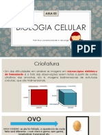 Aula 03 - Biologia Celular