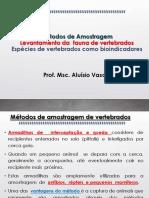 Métodos de Amostragem Levantamento Vertebrados Bioindicadores Vertebrados