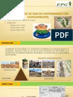 PPT- Biorremediación de Suelos Contaminados Con Hidrocarburos