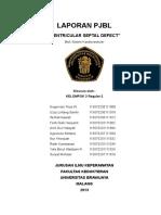 145183568-Laporan-Vsd-Fix.doc