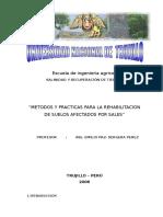 Metodos y Practicas Para La Rehabilitacion de Suelos Afectados Por Sales Copia