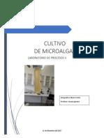 INFORME-CULTIVO-MICROALGAS listo.docx