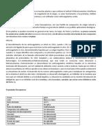 4.hidroxi.docx