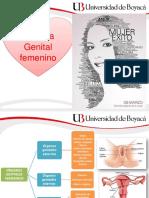 Semiología Genital Femenino 8marzo