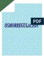 Present a Cino Smor Regula c in 2014