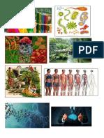 Imagenes de Ciencias