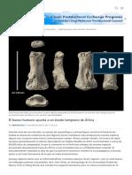 El Hueso Humano Apunta a Un Éxodo Temprano de África _ Ciencia _ AAAS