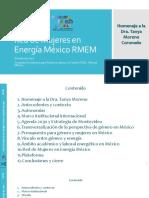 Red de Mujeres en Energía México RMEM