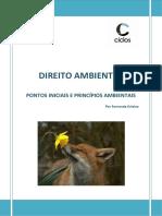 1. Pontos Iniciais e Princípios Ambientais
