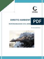 4. Responsabilidade Civil Ambiental.docx
