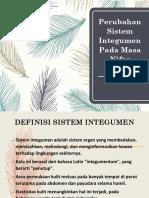 Perubahan Sistem Integumen