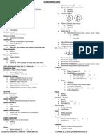 Plantilla Rapida para realizar Examen Neurologico.pdf