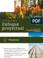 Enfoque proyectual (2)