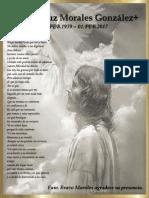 +.pdf