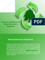 Reasons and Effects of Natural Resource Depletion